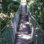 Bridge for crossing