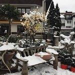 Photo de Bon Alpina