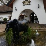 Photo of Fairmont Mount Kenya Safari Club