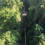 Zdjęcie Rainforest Zip Line at Mystic Mountain