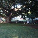 Foto de Kapiolani Park