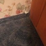 lixo na carpete
