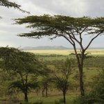 Serengeti Serena Safari Lodge Foto
