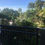 Фотография Hilton Aruba Caribbean Resort & Casino
