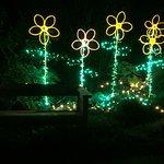 Foto de Mendocino Coast Botanical Gardens