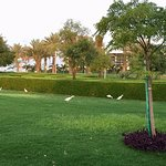 Billede af Bay La Sun Hotel & Marina