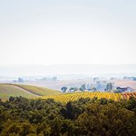 Breathtaking Views from Our Siena Guest Room
