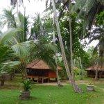 Photo of Palm Paradise Cabanas