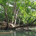 Photo of Blue Lagoon Excursion
