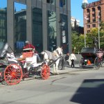 Carriage ride In Old Town