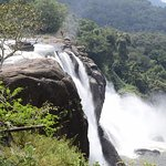 Athirapilly..the wildness..