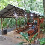 Tree Houses Hotel Costa Rica Foto