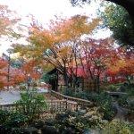 Photo of Yokohama Park