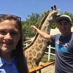 Foto de Chandelier Game Lodge & Ostrich Show Farm