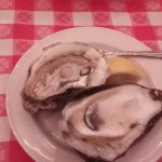 more oysters