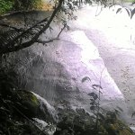 Photo of Toboga Falls