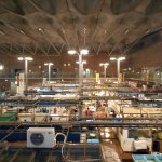 Photo of Karato Sea Market