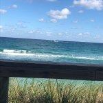 Photos of dune deck