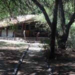 Une tente implantée sur pilotis au toit recouvert de palmes pour limiter la chaleur.