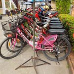 biciclette e moto a noleggio
