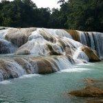 Foto de Cascadas de Agua Azul