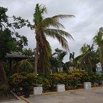 Photo de Royalton Cayo Santa Maria