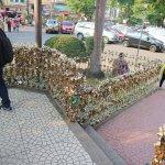 Padlocks on the fences