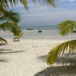 Photo de Silver Sand Beach Resort
