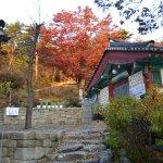 Foto van Yonggungsa Temple