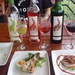 Premium wine tasting with tapas