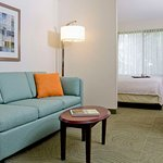 Photo of Springhill Suites Sarasota Bradenton