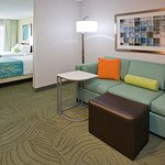 Foto de SpringHill Suites Rochester Mayo Clinic Area/Saint Marys