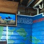 Photo of Bocas Dive Center
