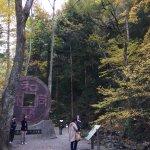 Foto de Wado Ruins