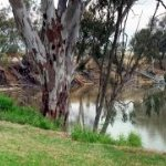 Each room as lawns at rear and overlooks the Murray River