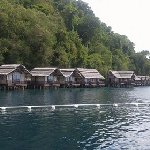 Samal houses. The 4th from the left is duplex type. 2 persons per unit