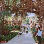 Photo of Villa Song Saigon
