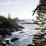 Photo of Wild Pacific Trail