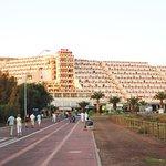 Photo of Palm Garden Apartments