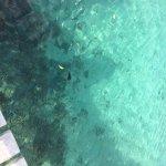 Aore Island Resort Foto
