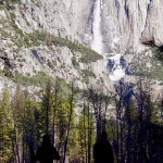 On the Yosemite Valley floor staring at an absolutely stunning waterfall.