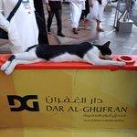 Photo of Dar Al Ghufran