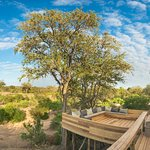 Photo de Simbambili Game Lodge