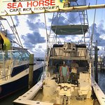 Seahorse Fishing Charters!!!