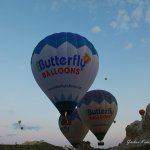 Photo of Butterfly Balloons