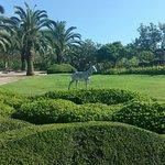 Fabulous park!