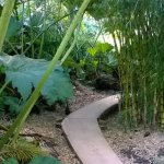 Bamboo hidding