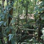 Evergreen Lodge Foto