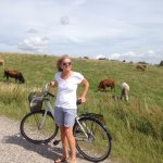 """We borrowed a couple of bikes and made a really nice, long ride up to and through the """"Mols Bjer"""
