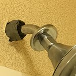 Foto de Holiday Inn Express Hotel & Suites Dothan North